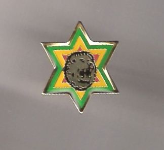 Star of David Lion Metal Pin - gold