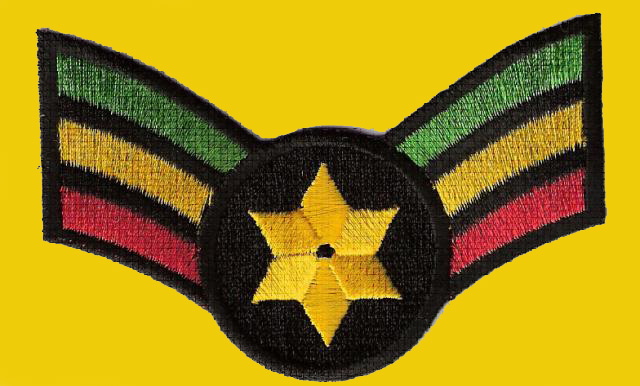 Star of David Wing Patch